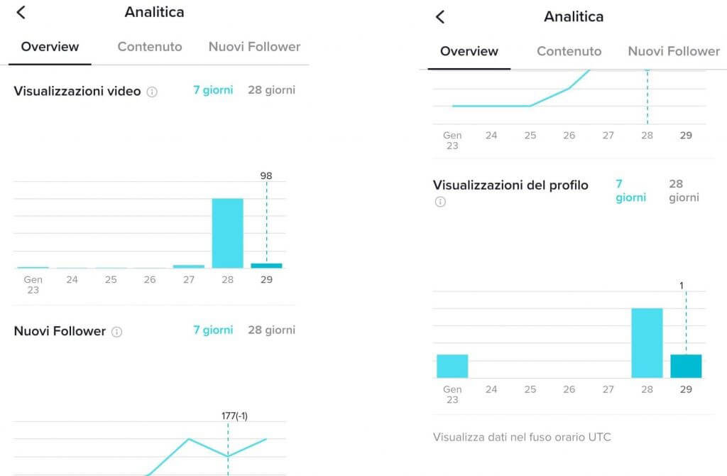 TikTok Analitica overview come misurare i risultati del tuo business