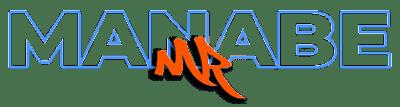 Manabe-Repici Facile Web Marketing SEO copywriter digital marketing