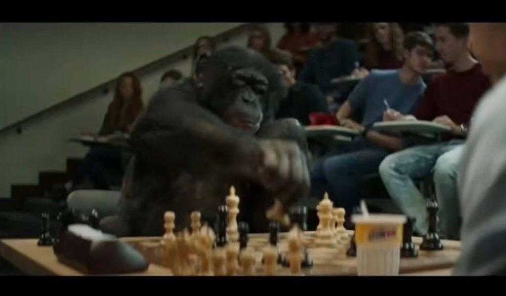 web marketing come partita a scacchi scimmia gioca a scacchi Nicola Onida Facile Web Marketing